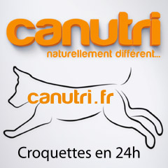 Canutri croquettes premium pour chiens